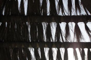 Telhado de praia de coqueiro